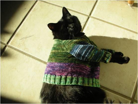 ZoieSweater